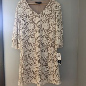 Ivory Lace Dress NWT